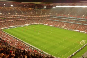 Estádio da Luz (Stadium Of Light), Lisbon. 65,647.