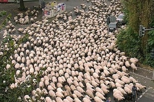 Absolute scenes in Wales as fans flood the streets to celebrate.  #football #soccer #euro2016 #franc